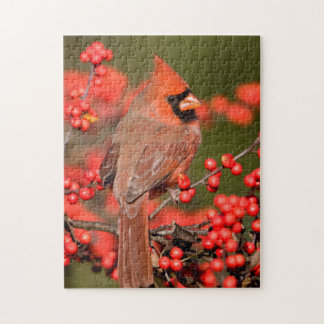 Northern Cardinal on Common Winterberry Puzzles