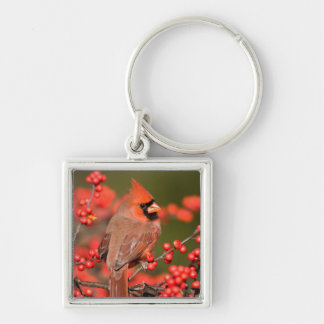 Northern Cardinal on Common Winterberry Silver-Colored Square Key Ring