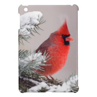Northern Cardinal Perched In A Tree Cover For The iPad Mini