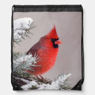 Northern Cardinal Perched In A Tree Drawstring Backpacks