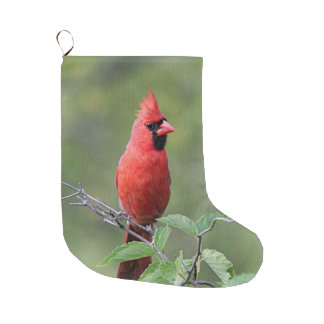 Northern cardinal perched large christmas stocking
