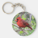 Northern Cardinal Photo Basic Round Button Key Ring