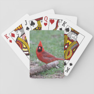 Northern Cardinal Playing Cards