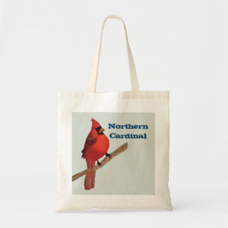 Northern Cardinal Red Bird