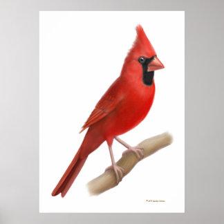 Northern Cardinal Red Bird Print