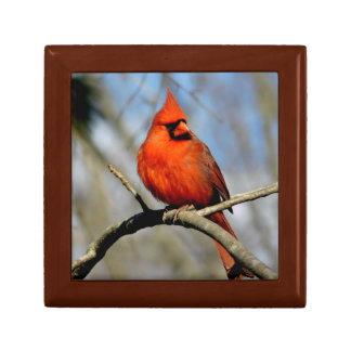 Northern Cardinal (Spring) Wood Gift Box