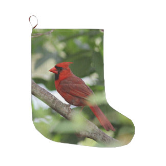 Northern cardinal stands on a tree branch large christmas stocking