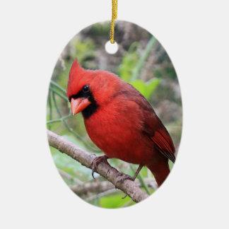 Northern Cardinal -- Traditional Christmas Bird Christmas Ornament
