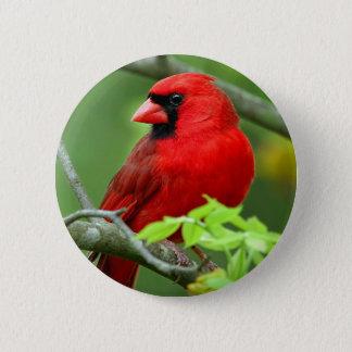 Northern cardinals 6 cm round badge