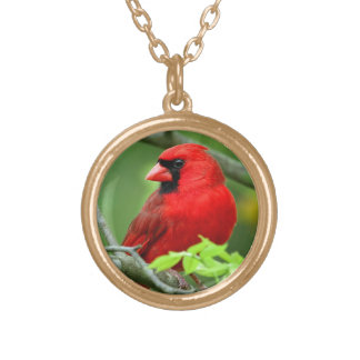 Northern cardinals gold plated necklace