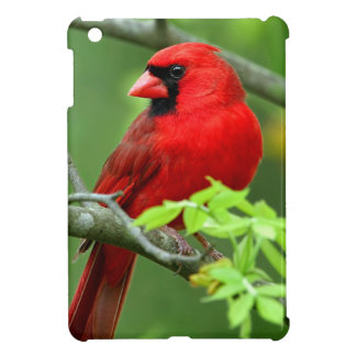 Northern cardinals case for the iPad mini