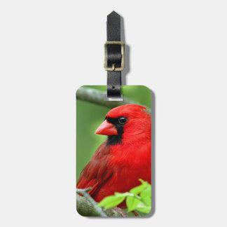 Northern cardinals luggage tag