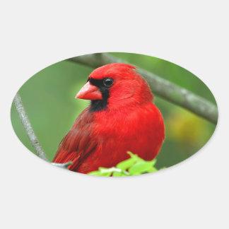 Northern cardinals oval sticker