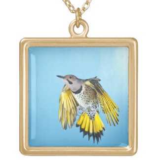 Northern Flicker Flying 2 Gold Plated Necklace