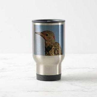 Northern Flicker, Yellow-shafted Mugs