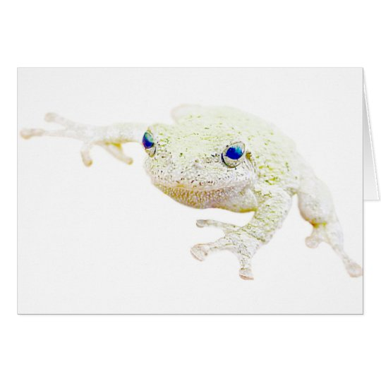 Northern Froggy Card