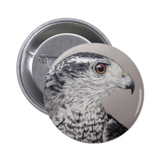 Northern Goshawk 6 Cm Round Badge