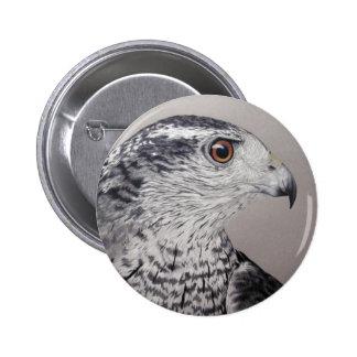 Northern Goshawk 6 Cm Round Badge