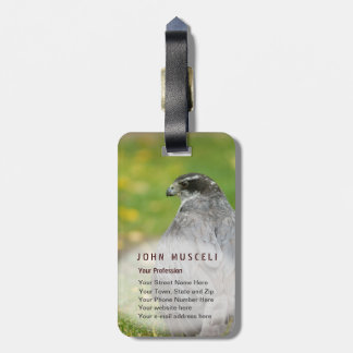 Northern Goshawk customizable business suite Tags For Luggage