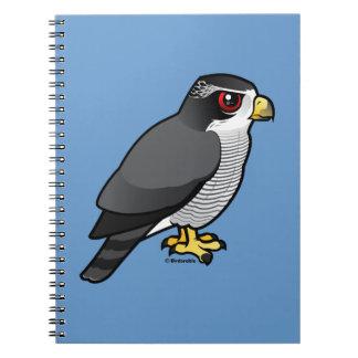 Northern Goshawk Note Book