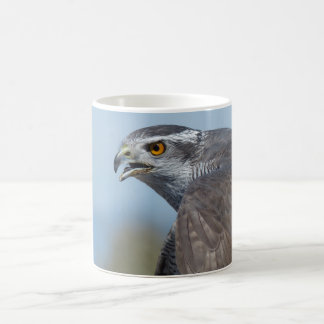 Northern Goshawk Screeching Coffee Mug