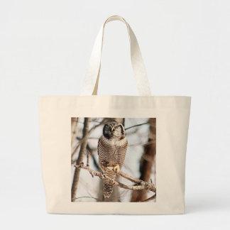 Northern Hawk Owl 3 Tote Bags
