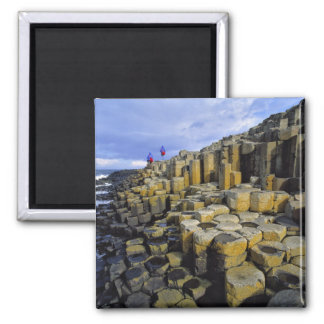 Northern Ireland County Antrim Giant s Magnets