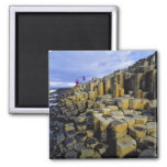 Northern Ireland, County Antrim, Giant's Square Magnet