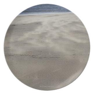 northern Ireland Plate