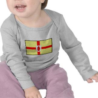 Northern Ireland Ulster Flag T-shirts