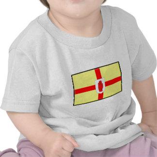 Northern Ireland Ulster Flag Tees