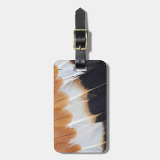 Northern Lapwing Feather Abstract Luggage Tag