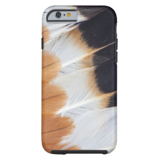 Northern Lapwing Feather Abstract Tough iPhone 6 Case