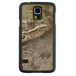 Northern Leopard frog, See-through Island, Carved Maple Galaxy S5 Case