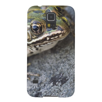 Northern Leopard frog, See-through Island, Galaxy S5 Case