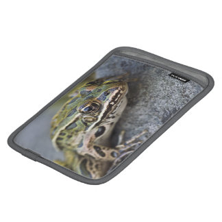 Northern Leopard frog, See-through Island, iPad Mini Sleeve