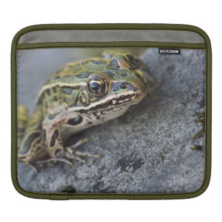 Northern Leopard frog, See-through Island, iPad Sleeve