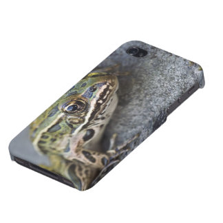 Northern Leopard frog, See-through Island, iPhone 4 Covers