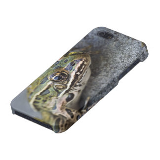 Northern Leopard frog, See-through Island, iPhone 5/5S Covers