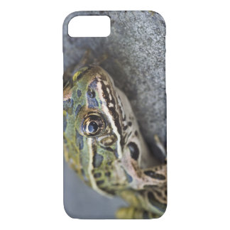 Northern Leopard frog, See-through Island, iPhone 8/7 Case