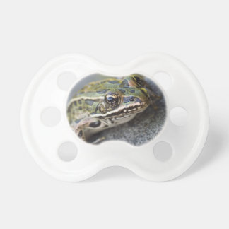 Northern Leopard frog, See-through Island, Pacifiers