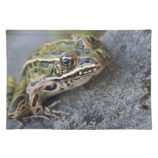 Northern Leopard frog, See-through Island, Placemat