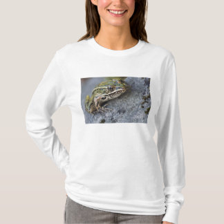 Northern Leopard frog, See-through Island, T-Shirt