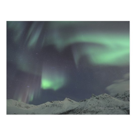 Northern Lights 3 Postcard