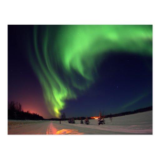 Northern Lights at Bear Lake Postcards