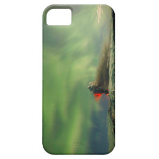 Northern Lights Eruption iPhone 5 Cover