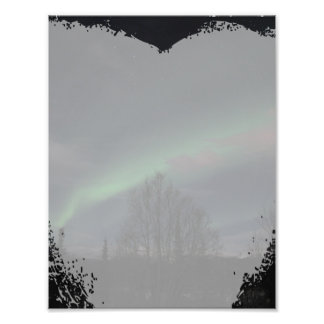 Northern Lights in Boreal Forest Art Photo