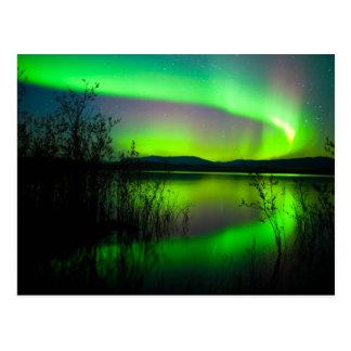 Northern lights mirrored on lake postcard
