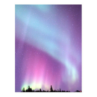 Northern Lights Sky Winter Alaska Stars Postcard
