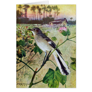 Northern Mockingbird Card